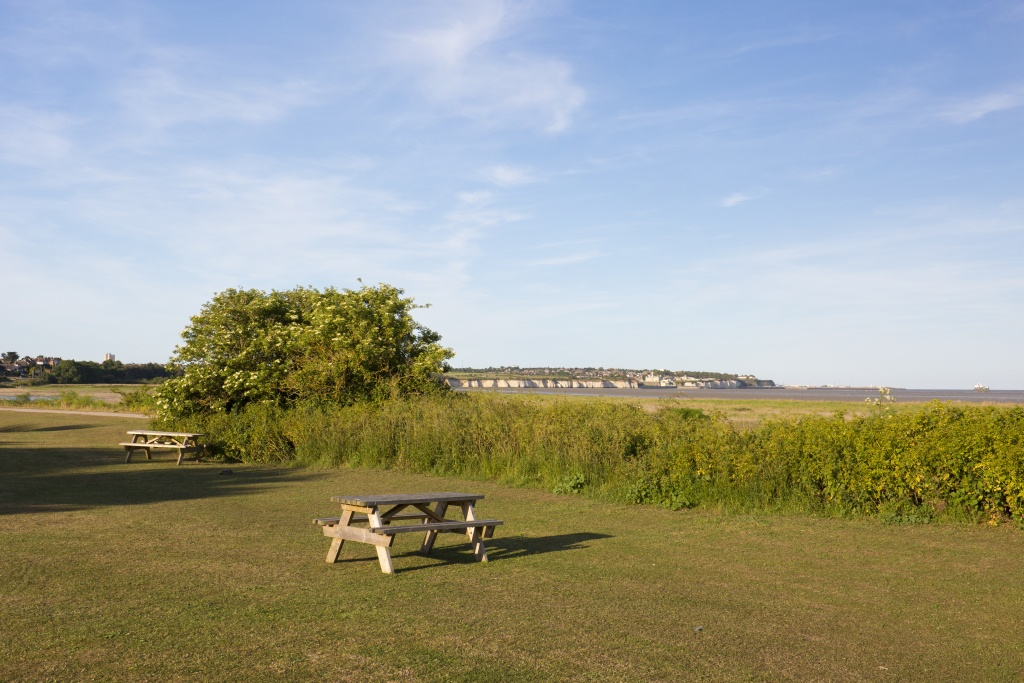 Sandwich and Pegwell Bay Nature Reserve